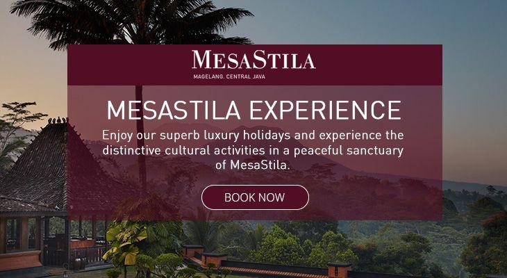 MesaStila Experience