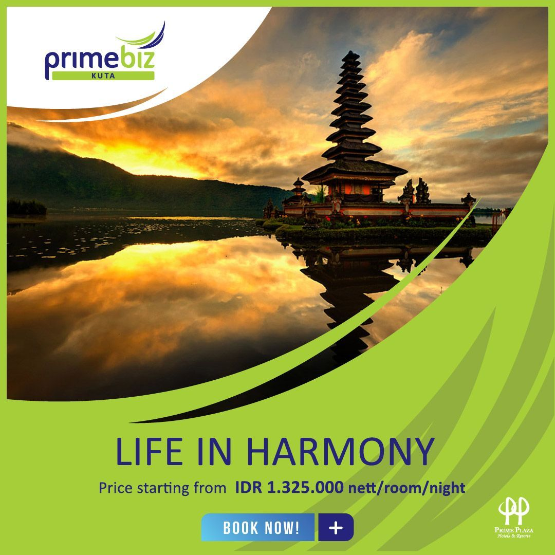 LIFE IN HARMONY PACKAGE